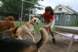 Tami Bishop, 36, of Denver plays with her three dogs Zander, Hidye, and Zach in the backyard of...