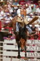 KAS274 Chad Klein of Stephenville, Texas competes in the bareback bronc riding competition at...