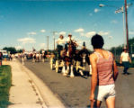 Lakewood on Parade horse drawn cart